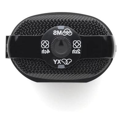 Zoom Portable Digital Voice APH2n Accessory
